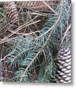 Pine Cone Brush Metal Print