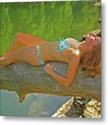 Pine Creek Summer Afternoon Metal Print