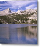 Pine Lake Metal Print