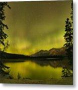 Pine Tree Silhouettes Metal Print