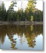 Pine Trees Across Mississippi River Metal Print