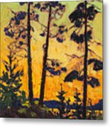 Pine Trees At Sunset Metal Print