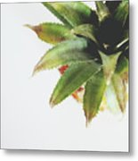Pineapple Top 2- Art By Linda Woods Metal Print