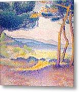 Pines Along The Shore, 1896 Metal Print