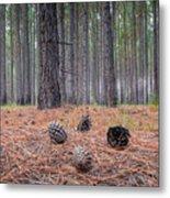 Pines And Needles 4 Metal Print