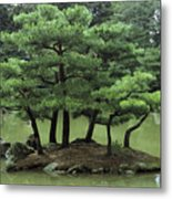 Pines On Island In The Gardens Metal Print