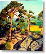 Pines On The Rocks Metal Print
