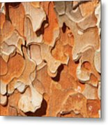 Pining For A Jig-saw Puzzle Metal Print