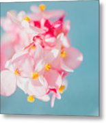 Pink And Baby Blue Metal Print