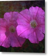Pink And Gold 6156 Dp_2 Metal Print