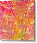 Pink And Orange Autumn Metal Print