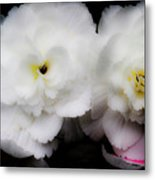 Pink And Yellow On White 3 Metal Print