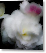 Pink And Yellow On White 5 Metal Print