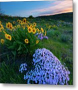Pink And Yellow Sunset Metal Print
