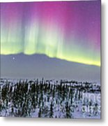 Pink Aurora Over Boreal Forest Metal Print
