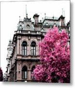 Pink Autumn Metal Print