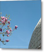 Pink Blossom And Glasshouse Metal Print