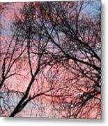 Pink Blue Sky Metal Print