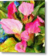 Pink Calla Lilly Metal Print