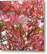 Pink Dogwood Flowering Tree Art Prints Canvas Baslee Troutman Metal Print