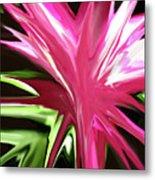 Pink Explosion Metal Print