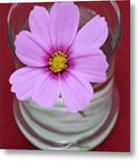 Pink Flower Metal Print by Frank Tschakert