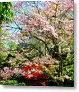 Pink Flowering Dogwood Metal Print
