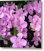 Pink Flowers. 6-22-17 Metal Print