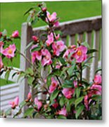 Pink Flowers By The Bench Metal Print