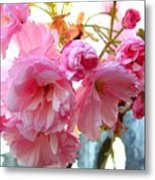 Pink Flowers Metal Print by D R TeesT