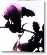 Pink Flowers In Empty Space Metal Print