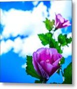 Pink Flowers On A Blue Sky Metal Print