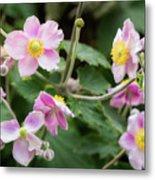 Pink Flowers Over Green Metal Print