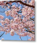 Pink Fluffy Branches Metal Print
