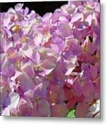 Pink Hydrangea Flower Floral Art Prints Baslee Troutman Metal Print