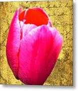 Pink Impression Tulip Metal Print