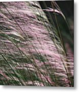 Pink In The Wind   Metal Print
