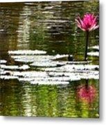 Pink Lily 12 Metal Print