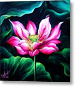 Pink Lotus From L.a. City Park Metal Print