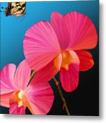 Pink Lux Butterfly Metal Print