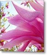 Pink Magnolia Flower Art Print Botanical Tree Baslee Troutman Metal Print