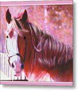 Pink Mare Metal Print