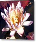 Pink On Gold Metal Print