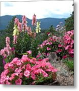 Pink On The Mountain Metal Print