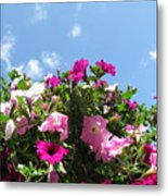 Pink Petunias In The Sky Metal Print