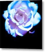 Pink Rose Has The Blues Metal Print