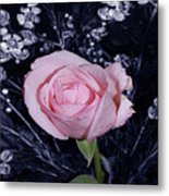 Pink Rose Of Imperfection Metal Print