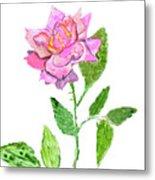 Pink Rose, Painting Metal Print