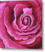 Pink Rose Pastel Painting Metal Print