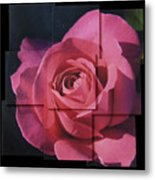 Pink Rose Photo Sculpture Metal Print